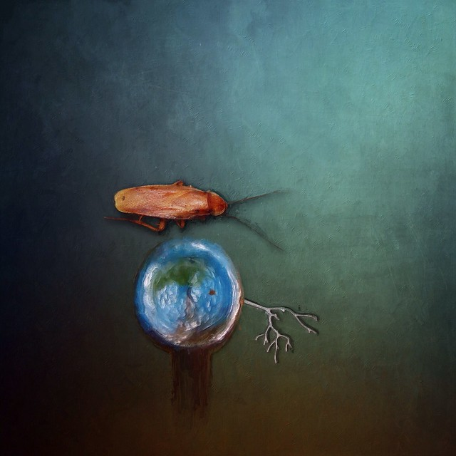 Survival in a Destructive World