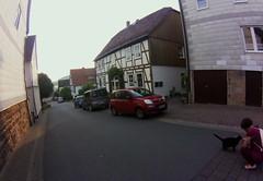 Trendelburg cat