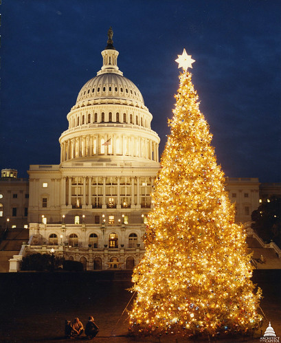 1982 U.S. Capitol Christmas Tree | by USCapitol