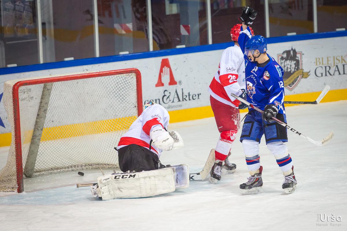DP2016/2017: HKMK Bled vs. Crvena Zvezda, Ledena dvorana Bled, 21. 1. 2017