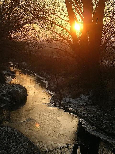 Winter sunset over the brook (Sélestat, Alsace - France)