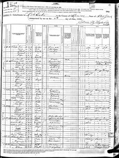 1880 Rochester, Monroe County, New York census record | by yhoitink