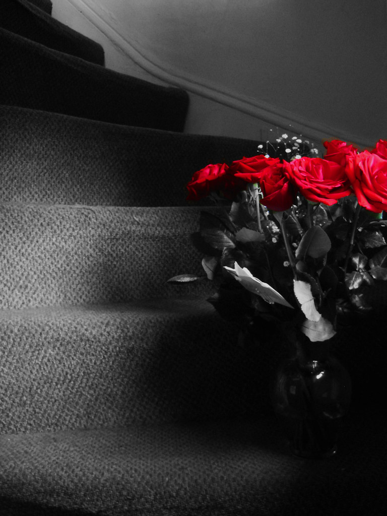 She left me roses by the stairs, surprises let me know sh… | Flickr