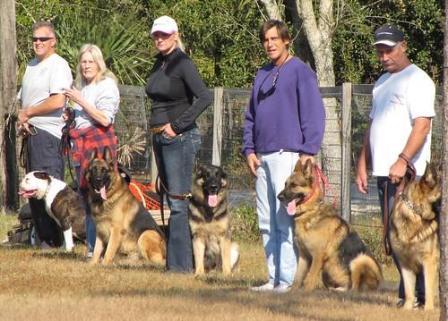 Dog Training - Jan 2009 | by airwaves1