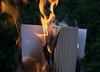 Fahrenheit 451 by glaserei