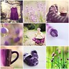 TILT {Purple Rain} by R♥ssy