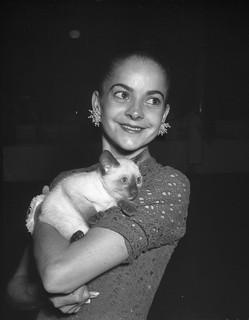 Ballerina Kathleen Gorham at a cat show, Sydney Town Hall, 2 December 1957 / photographer Jack Hickson