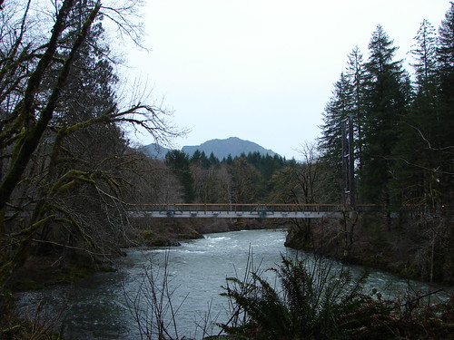 Kings Mt. from the Wilson River Trail