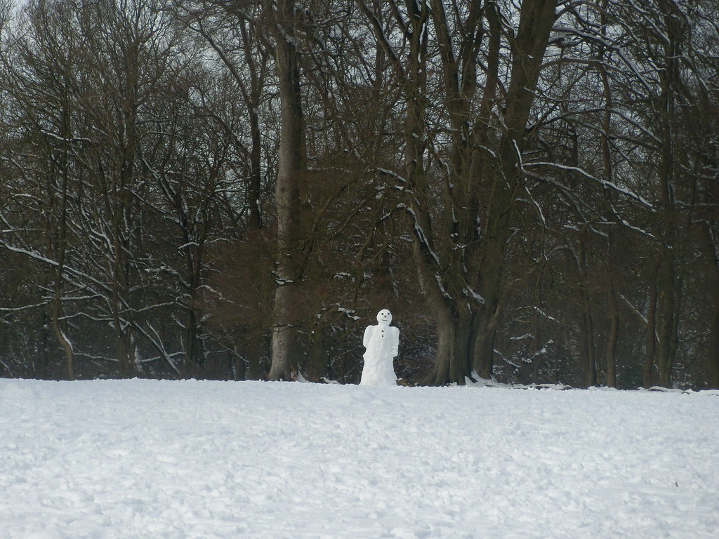 Sinister snowman Sinister snowman at the edge of the woods. Bridgewater Monument. Tring to Berkhamsted