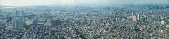 Tokyo Sky Tree View Panorama