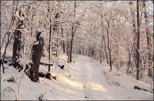 park county morning winter snow nature sunrise virginia bell hiking hill scenic hike 03 va valley betsy augusta february shenandoah shenandoahvalley 2009 staunton stauntonvirginia betsybell