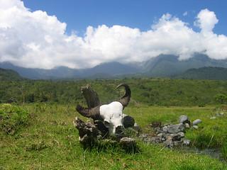 Mt Meru National Park, Tanzania