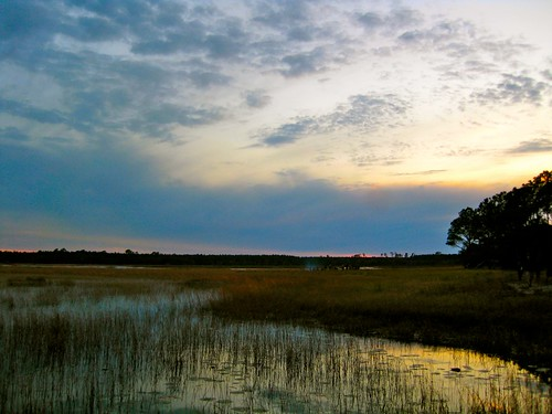 sunset sky 3 grass rainbowgathering rainbow florida nationalforest wetlands ocala maincircle project365
