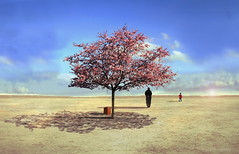 Tree of Life in Spring   by h.koppdelaney