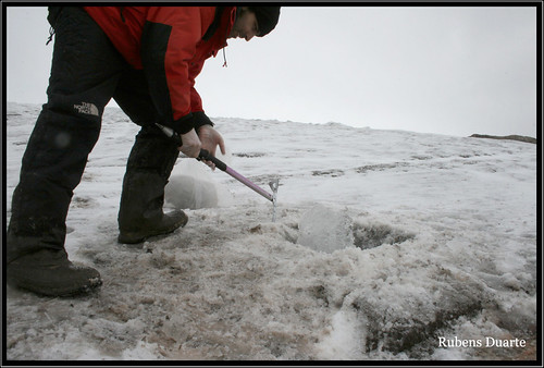 Ice sampling on Ecology Glacier