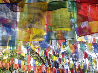 Prayer flags | by imadayperson