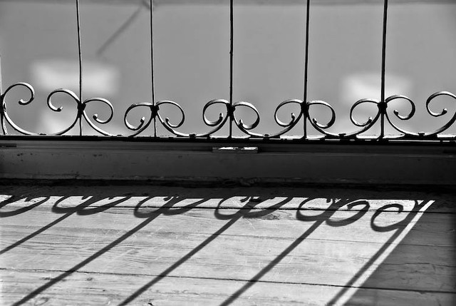 40 ~ reflections on a sunny day