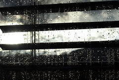 Raindrops on the Window V