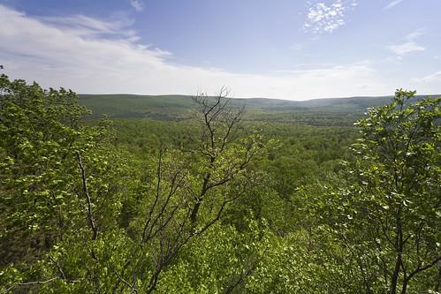 nature scenery day pennsylvania vista overlook pinegrovefurnacestatepark michauxstateforest sunsetrockstrail sunsetrocksoverlook pwpartlycloudy