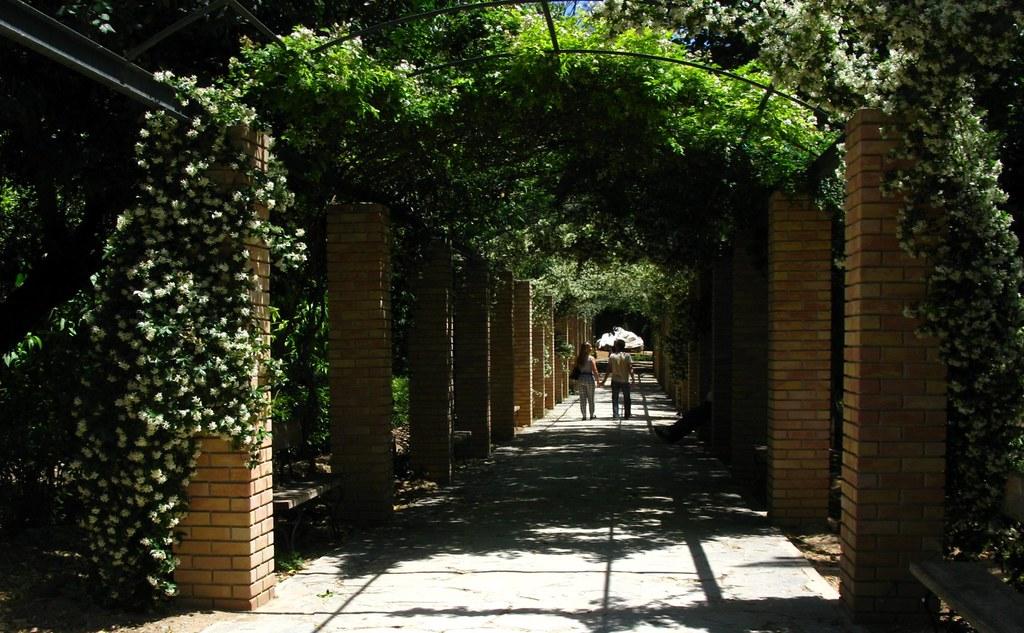 Image result for athens national garden