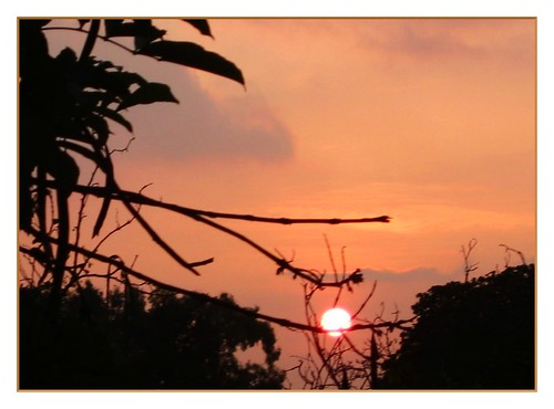 sky orange cloud sun india tree nature sunrise ilovenature bangalore karnataka മലയാളം malayalam37134561n00 naturescenes prakriti bengaluru ഭാരതം പ്രകൃതി ബെംഗളൂരു കര്ണാടകം