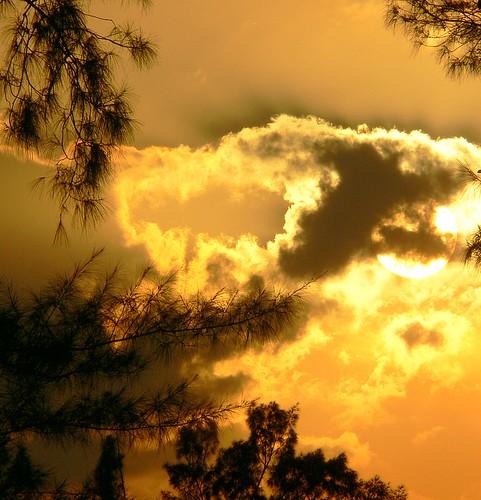 sunset florida fl rv cortez january2006 aswpix