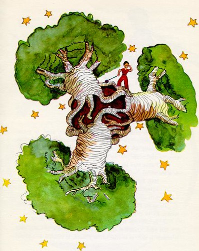 """Picture of baobab (one of the image from """"the little prince"""" by Antoine De Saint-Exupery)"""