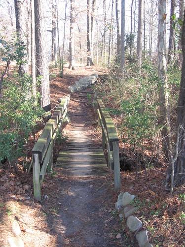 uploadedbyluca greenvillenc bridge woods trees