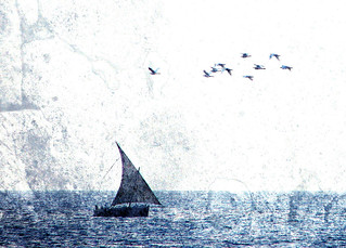 Dhow & egrets textured