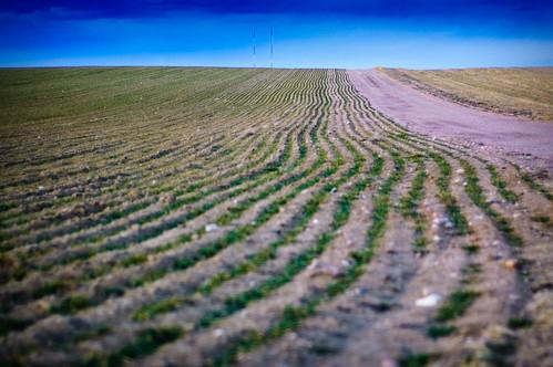 road tower field radio landscape nikon colorado country dirt dirtroad radiotower d40