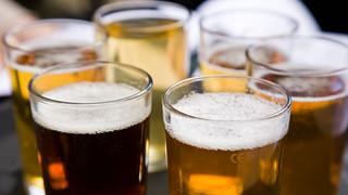 11 - beer festival   by Daveybot