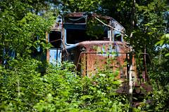 Abandoned Train - Albany, NY - 09, May - 01 by sebastien.barre