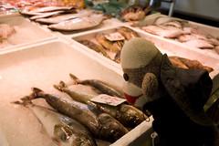 otaru fish market | by peaboat