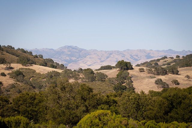 Hollister Hills State Vehicular Recreation Area 9078