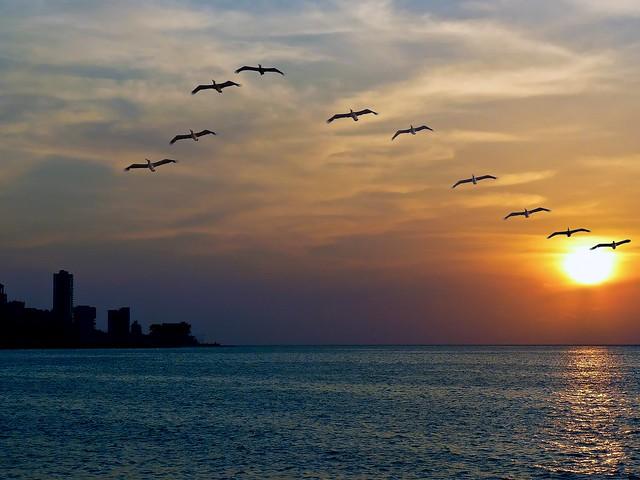 Atardecer en el Malecon De La Habana - 1000332