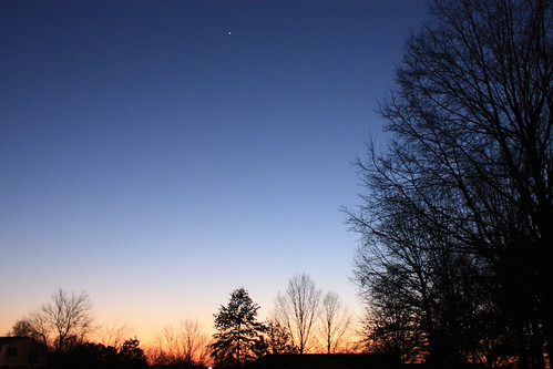 trees sunset star venus