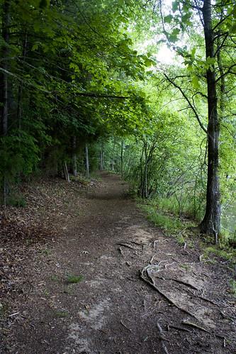 park morning cane creek forest nc woods foggy northcarolina trail hdr waxhawnc canecreekpark ghholt