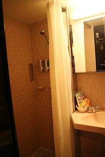 Carnival Elation - Demi-suite - Shower | by Miss Shari