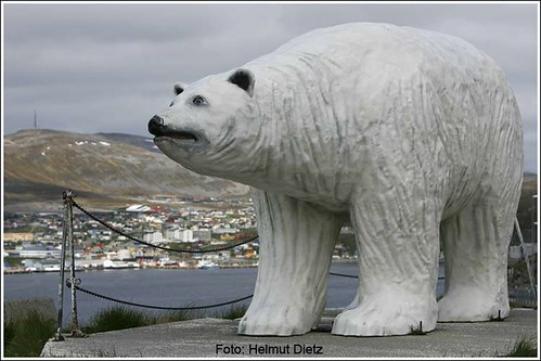 Hammerfest-Bär | by dietz_helmut