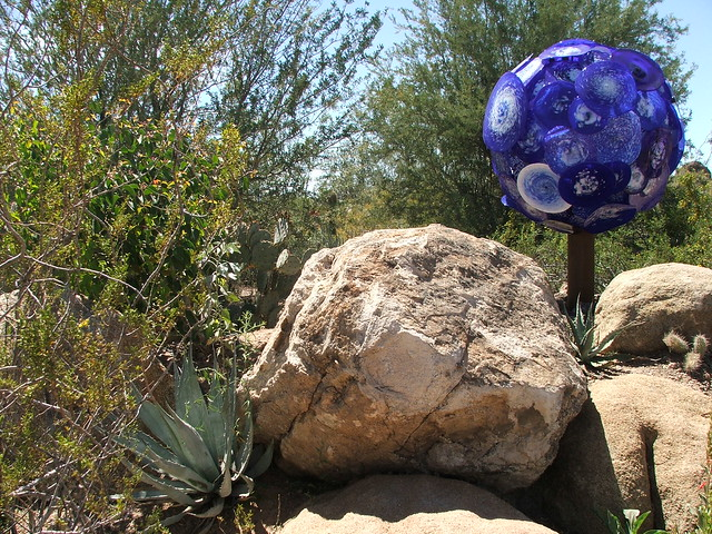 Chihuly: The Nature of Glass at Desert Botanical Gardens