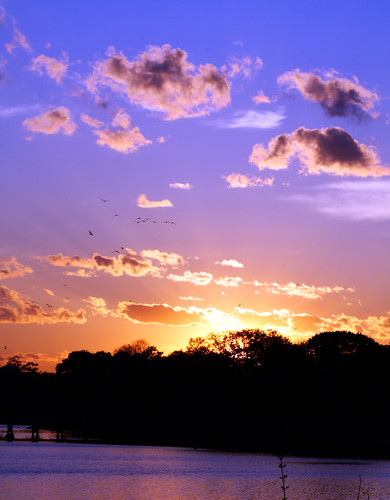 park sunset sky sun water birds mobile clouds canon eos rebel photo purple alabama municipal xsi mobilealabama 450d