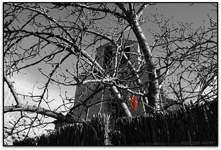 La fulla, Església de Sant Miquel Sesperxes, Pla de la Garga (Sant Martí de Centelles, Osona)