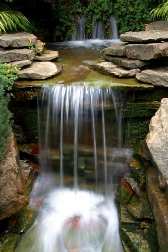 park columbus ohio plant nature water gardens waterfall rocks stream metro inniswood westerville