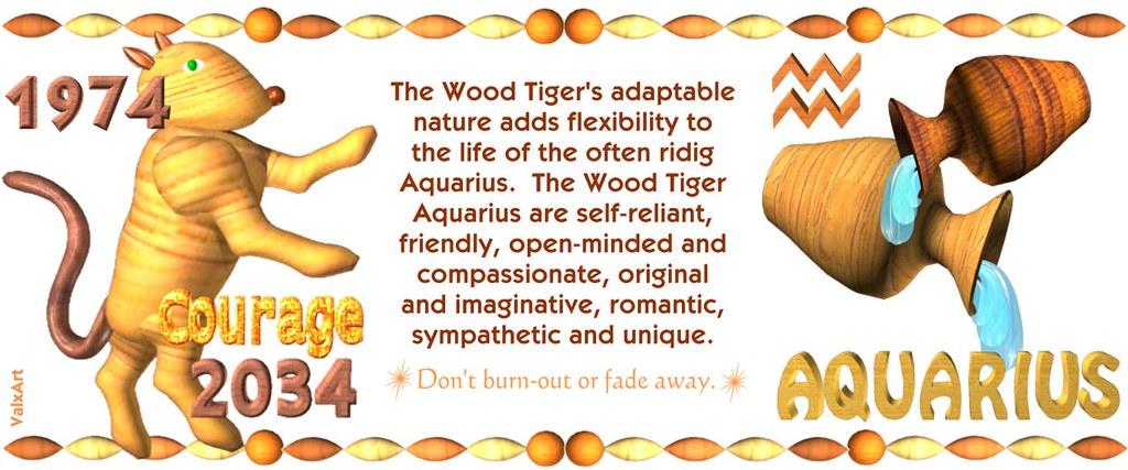ValxArt's 1974 2034 Wood Tiger Aquarius w horoscope for pe