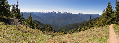 trees panorama usa mountains canon landscape washington spring day unitedstates hiking olympicpeninsula sunny portangeles clear pacificnorthwest washingtonstate olympicnationalpark hurricaneridge mountolympus olympicmountains tamron2875mmf28 canon6d canoneos6d tamron2875mmf28xrdildasphericalifa09