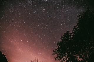 Stars in the sky #startrails#sky#stars#night#universe#nikon#popular#masterpiece#stars#longtimeexposure#germany | by ThisisalexK
