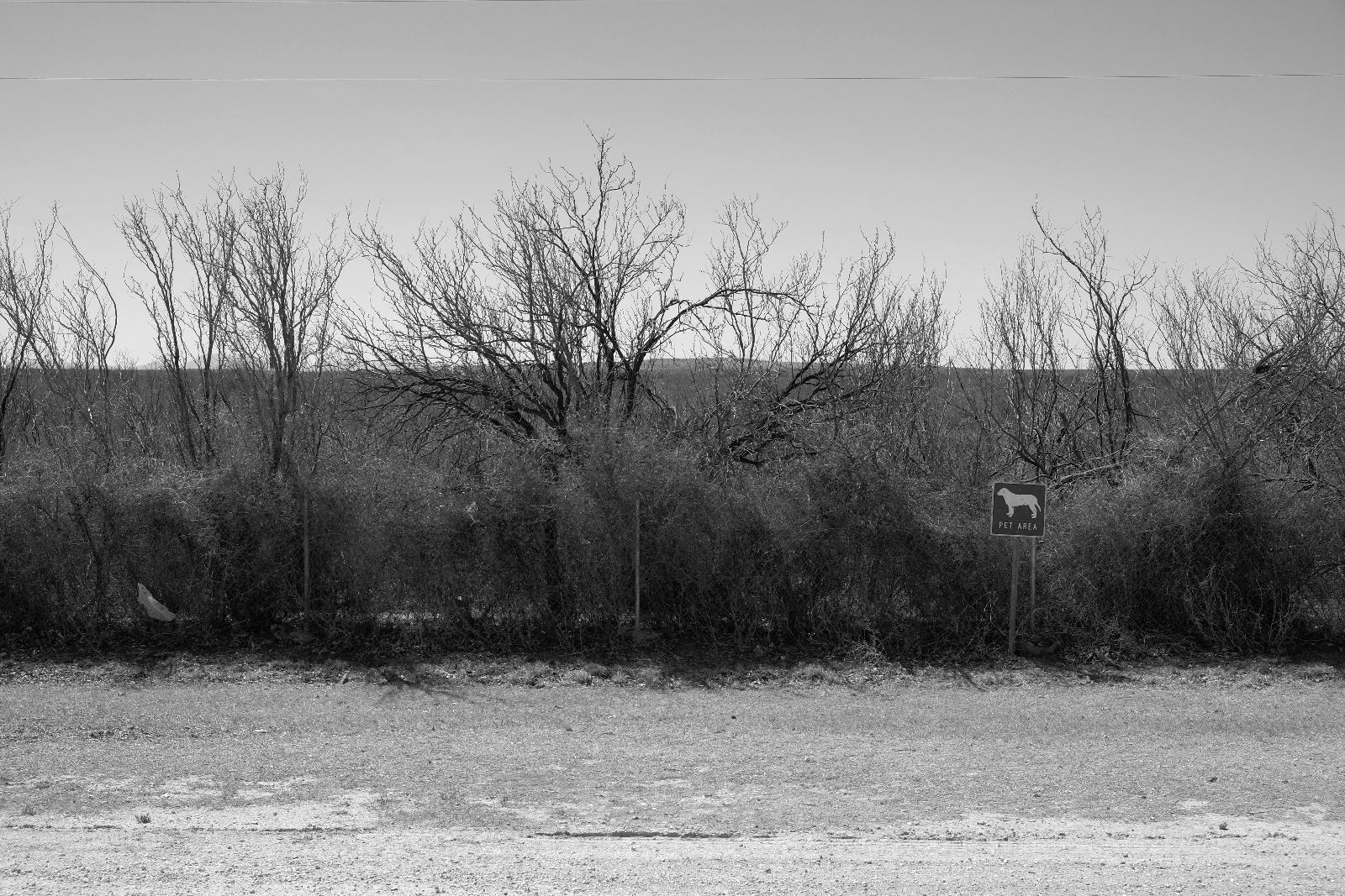 Mon, 03/17/2014 - 12:55pm - pet area
