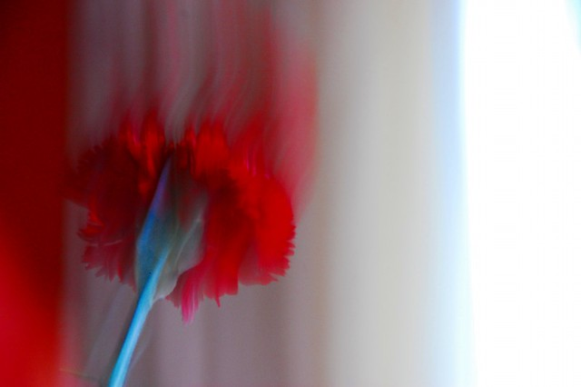 Para  España. #46- Mayo 12/2011- Explore-