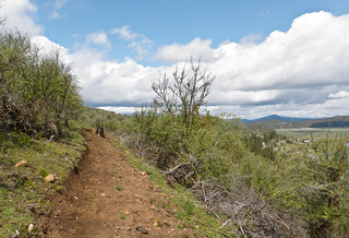 Lake View Trail -  Klamath Falls Mountain Bike Trails | by ex_magician