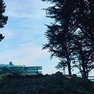 Sit, relax and enjoy.... Inhale, exhale.... Spring is around the corner, 49sq miles of esthetic and delicious goodness surrounds you.... Take a moment and take it in....  #sf #sanfrancisco #grandviewpark #turtlehill #bench #trees #sky #clouds #fog #buildi | by a25i